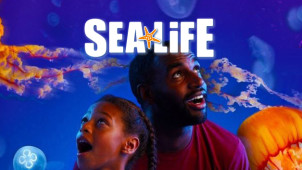 Adult Ticket for £9 when Accompanied by a Child Under 5 Years at Scottish Sea Life Sanctuary Oban