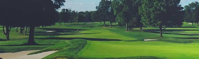 Trendy Golf Coupon Code