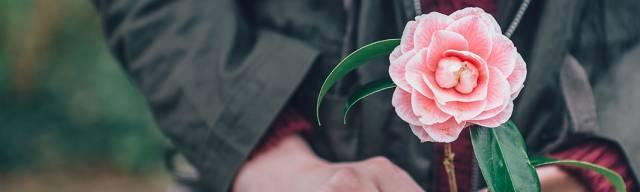 Waitrose Flowers Discount Codes