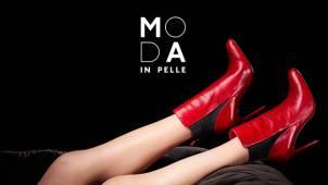 15% off Orders at Moda in Pelle